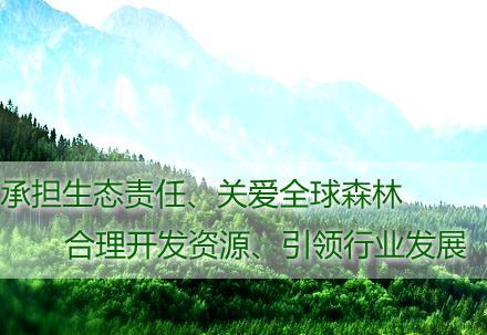 商帝国商学院_商帝国网-中林集团关于公开招聘财务专业管理人才的公告