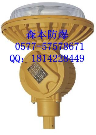 40瓦电磁感应灯SBD1102-YQL40
