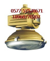 批发大量SBD1105-YQL120免维护节能防爆灯