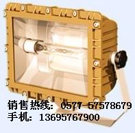 SBD1109防爆泛光灯