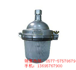 NFE9112防眩应急顶灯