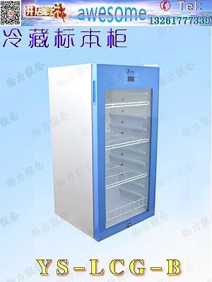 广西省冷藏标本柜生物冷藏柜冷藏标本柜