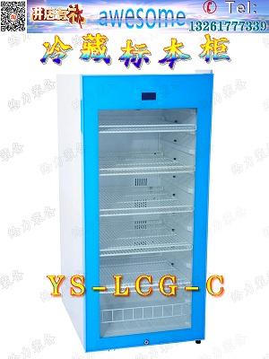 湖北省动植物标本柜医用标本柜真菌标本柜
