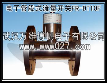 消防流量开关 电子管段式流量开关 型号FR-DT10F