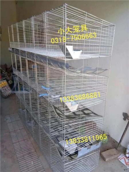 供鸡鸽兔笼 狐狸笼 鹌鹑笼 宠物笼 饲料盒 饮水器 养殖设备
