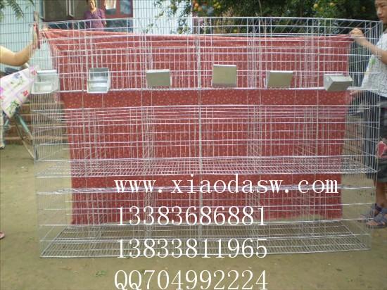 鸽子笼兔子笼狐狸笼鹌鹑笼宠物笼鸡笼鸽笼兔笼鸟笼运输笼鸡鸽兔笼