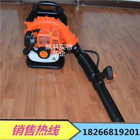 EB808背负式吹风机 便携式马路清理机 庭院道路清雪除尘机