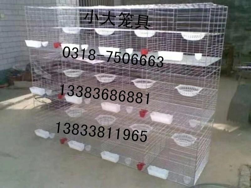鸡笼子鸽子笼兔子笼鹌鹑笼狐狸笼宠物笼运输笼鸽笼子兔笼子貉子笼