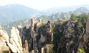 7月12日大河东-崂顶-大河东短线登山活动召集_商帝国商学院_商帝国网